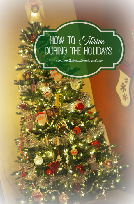 Don't just survive Ten Tips to Thrive During the Holidays