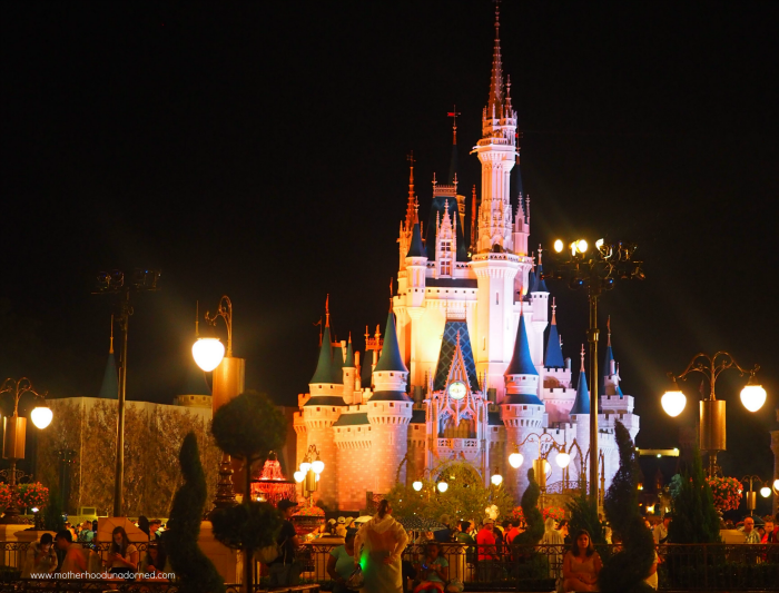 Cinderella Castle at Night Disney World Magic Kingdom