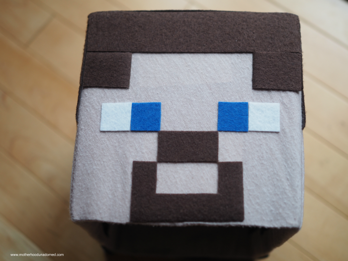 DIY-Minecraft-Steve-Box-Hat