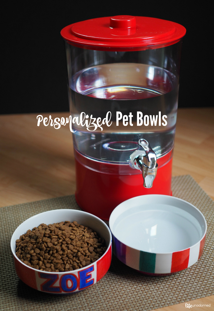 personalized pet bowls tutorial